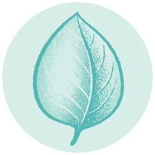 Terpene Icon Ocimene