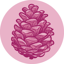 Terpene Icon Pinene