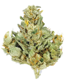 Sour Dubb Cannabis Flower